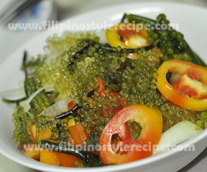 Seaweeds Salad(Lato)